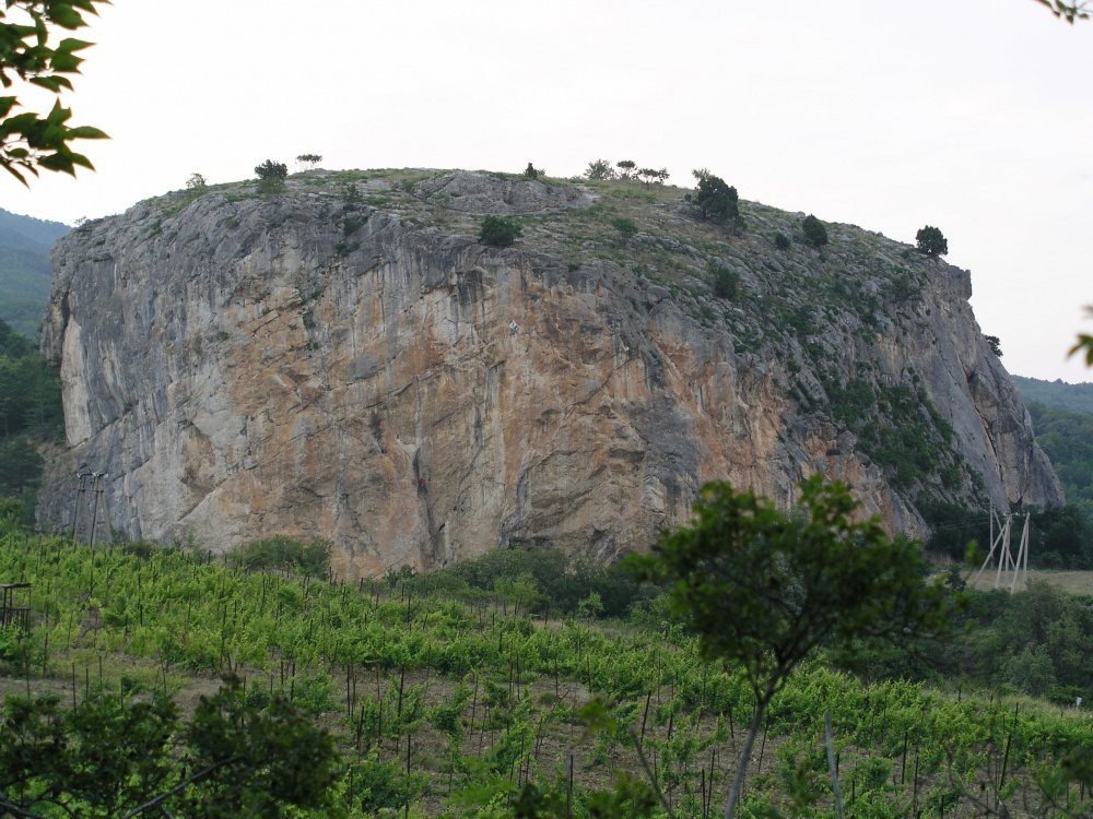 шиба ину фото скалы ярко красного цвета крым стал знаменитым благодаря